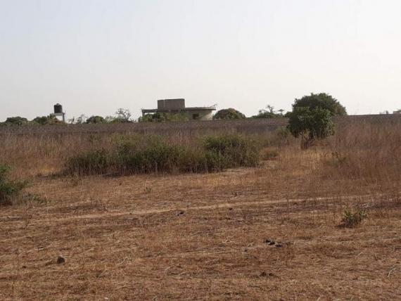 DOSSIER  Le contentieux foncier au Sénégal.  La terre, est-elle l'œuf à casser pour faire l'omelette du développement ?