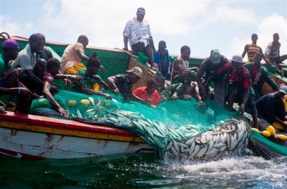 Immatriculation des pirogues de pêche : les enjeux expliqués aux pêcheurs de la région de Thiès