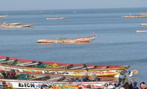 Pêche : les acteurs de Thiès invités à respecter la réglementation en vigueur