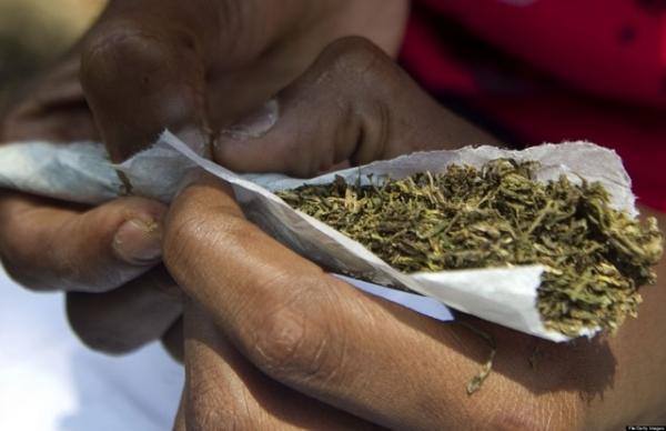 Le Cannabis : La drogue la plus consommée au Sénégal.