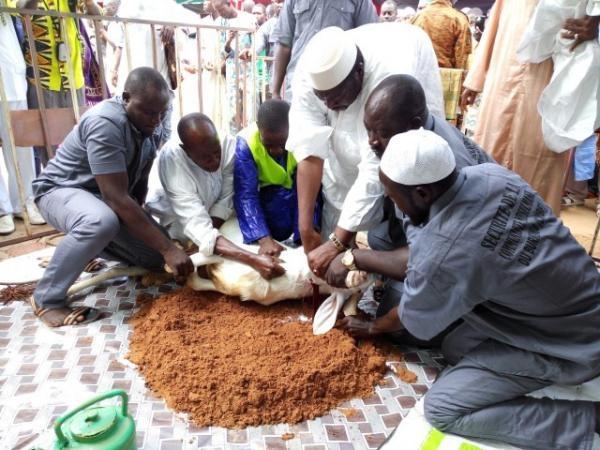 Tabaski : quel est les sens de cette fête au Sénégal ?