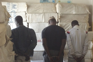 Sénégal-DROGUES : L'OCRTIS saisit 1, 10 tonne de chanvre indien