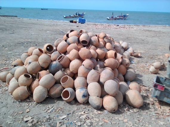 PECHE ARTISANALE – FILIERE POULPE 12.000 pots à poulpes vont être immergés pour réhabiliter les habitats marins