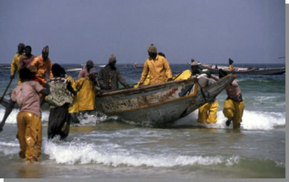 La Papes en campagne nationale de pétitions pour dire non à l'accord de pêche avec l'UE