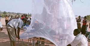 Elimination du paludisme d'ici 2018: le Sénégal sur la bonne voie
