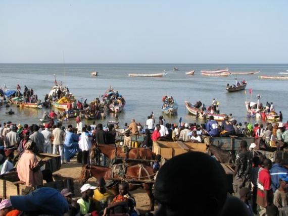 Pêche artisanale : Les acteurs dénoncent « le pilotage à vue » du gouvernement