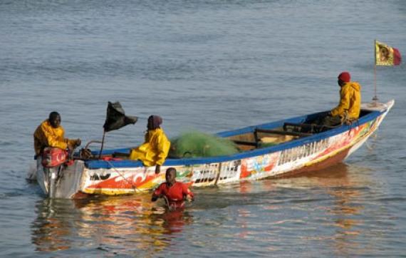 Ngaparou :Deux pirogues arraisonnées pour pêche en zone interdite