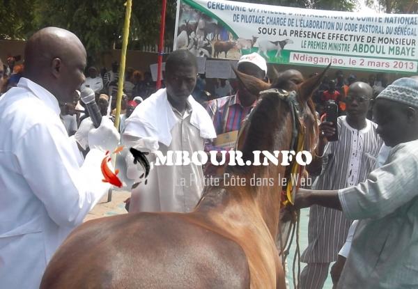 Sécurisation de l'élevage pastoral : Les comités ad hoc installés à Ndiaganiao par le Premier Ministre