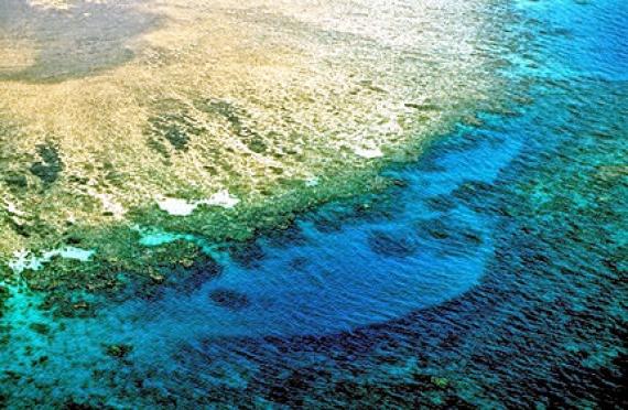 Près de 6 milliards FCFA pour sauvegarder l'écosystème marin de sept pays