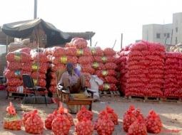 Mbour - Flambée du prix de l'oignon : Le prix de l'oignon connaît une hausse en cette veille de Tabaski .
