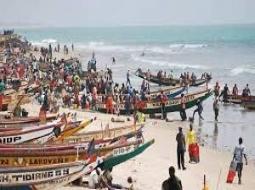 JOAL : Les acteurs de la pêche interpellent l'Etat sur les contradictions des licences de pêche et exigent le gel de celles-ci.