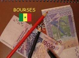 SANDIARA-PLAN 1 10 10 : 100 bourses offertes pour des Licences et Masters Professionnels.