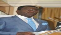 MBOUR : le mouvement « Tefess Gui »  porté sur les fonts baptismaux