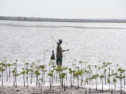 Pêche - Somone : Les populations s'opposent à la création d'une aire marine protégée et exigent l'annulation du décret.