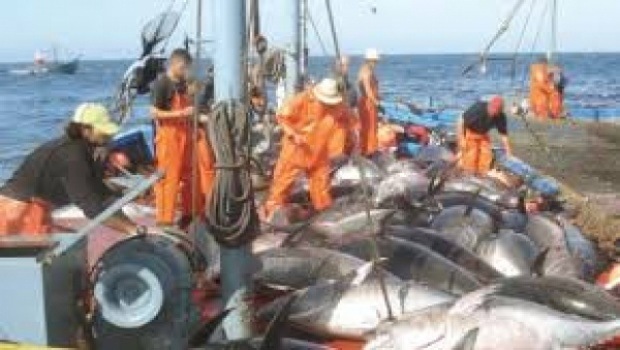 Accords de pêche : Des professionnels  militent pour des accords qui privilégient  la pêche artisanale