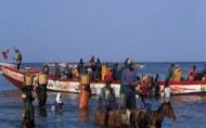La Journée mondiale de la pêche célébrée à Nianing, le 21 novembre
