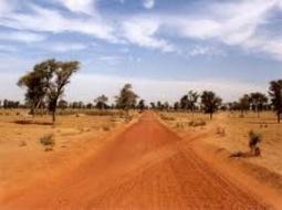 800 km de pistes rurales seront construites avant fin 2015 , selon le directeur du PUDC