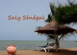 Saly : un hôtelier pour la sauvegarde des investissements