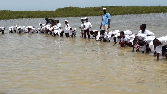 Journée mondiale de l'océan : les enfants demandent aux adultes ''d'arrêter d'agresser la mer''.