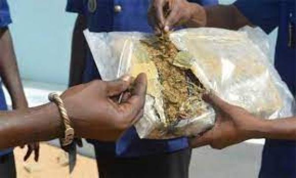 LUTTE CONTRE LE TRAFIC DE LA DROGUE : l'OCRTIS met la main sur 102 kg de chanvre indien.