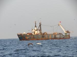 Pêche : Malal Sané, Secrétaire Permanent de la Commission Sous Régionale de Pêche : « La pêche Inn, un frein à la sécurité alimentaire ».