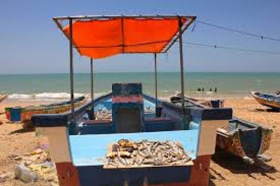 Zone de pêche protégée de Ngaparou : Le mal est dans la surveillance